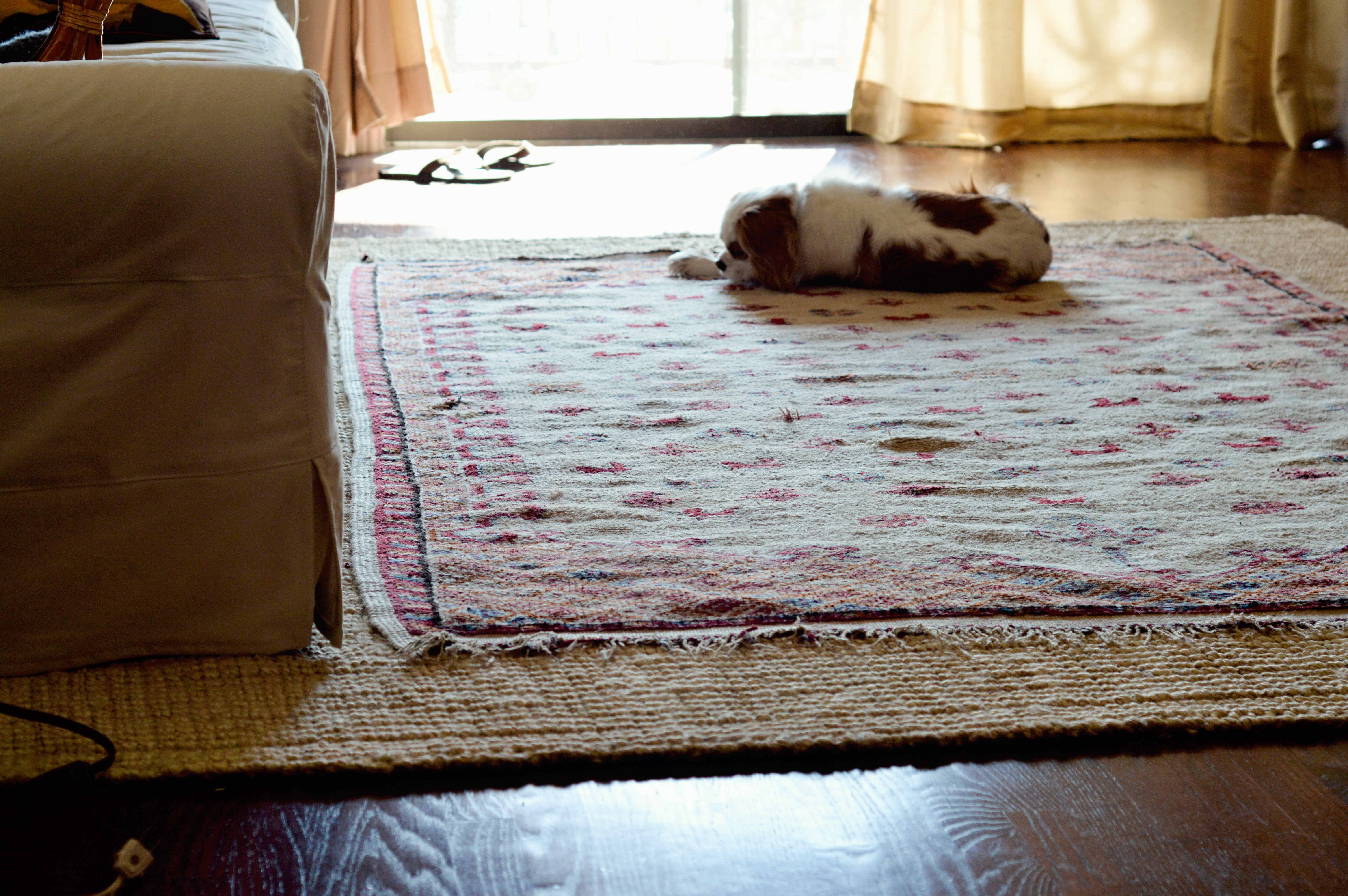 Jute Rug Living Room Area Rugs Connecting Dining And Living Room Trying To Make My