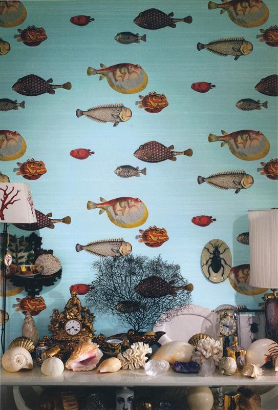 Blowfish Wallpaper 21 Wallpapers Wallpapers For Desktop HD Wallpapers Download Free Images Wallpaper [1000image.com]